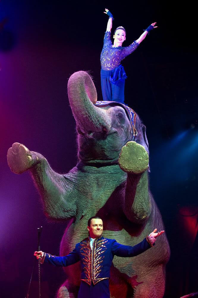 circus-knie-2012
